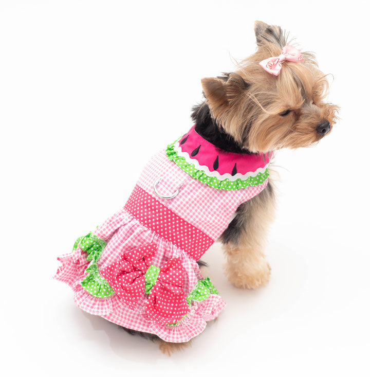 Watermelon Dog Dress - Harness with matching Leash