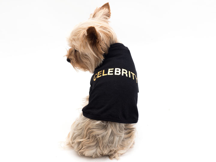 Cotton Celebrity T- Shirt