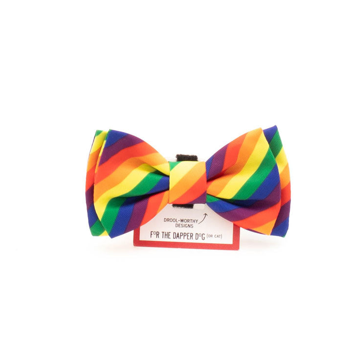 Rainbow Bow tie great for Easter