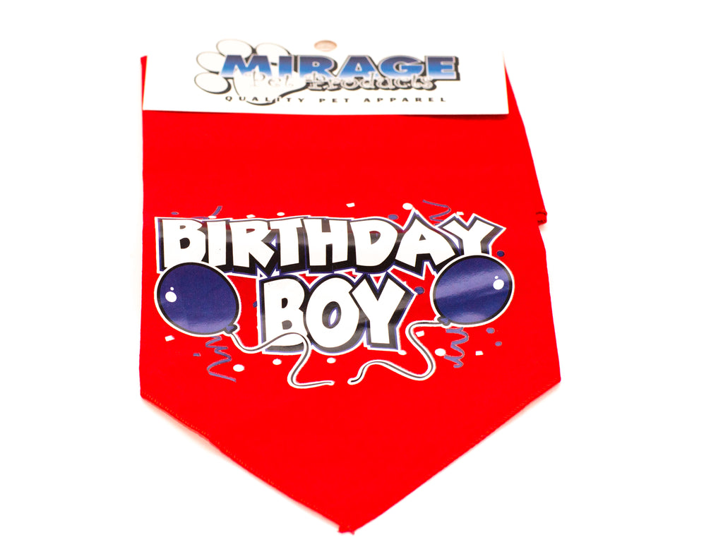 Birthday Boy screen print Bandana