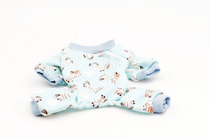 Baby Dog Onesie- blue