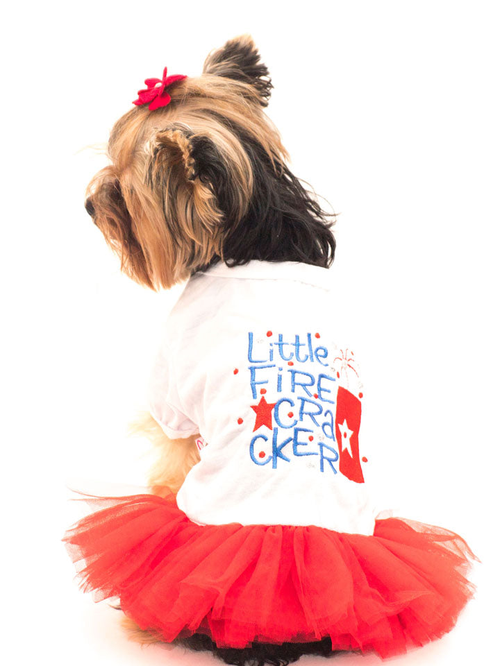 Tee Shirt Dress With TuTu