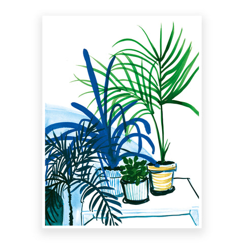 Group of Plants, 30x40cm Print