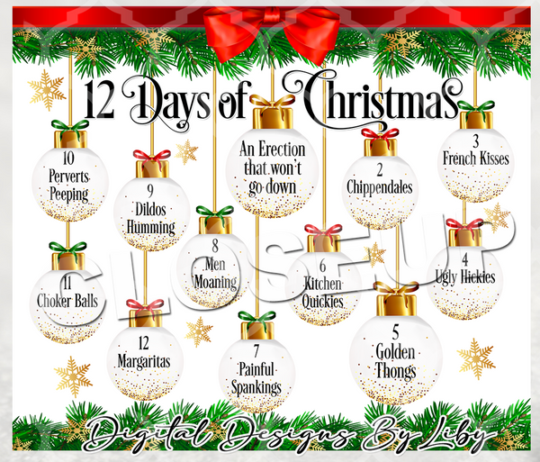 12 DAYS OF XXXMAS SKINNY TUMBLER (WARNING! Naughty Design)