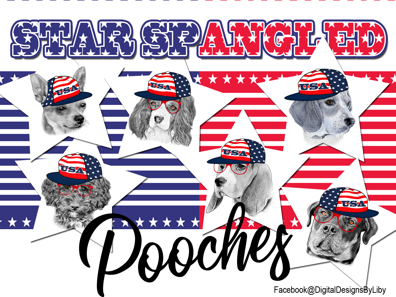 Star Spangled Pooches T-Shirt Design (Rottie)