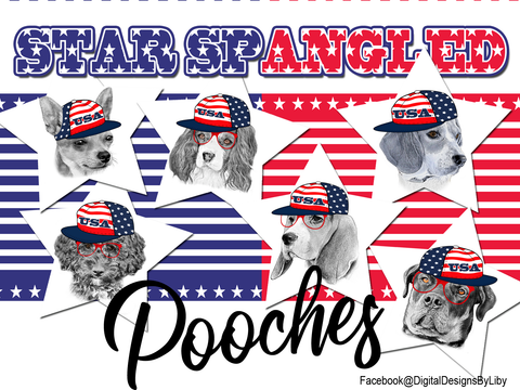 Star Spangled Pooches T-Shirt Design (Chihuahua)