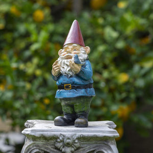 The Wise Gnome