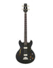Aria Pro II Bass Guitar- Hollow Body - Aria Muzic