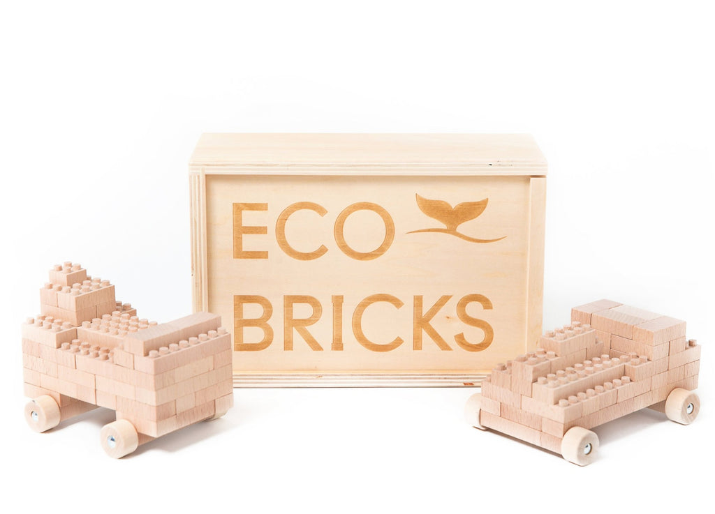 Eco-Bricks 90 pcs