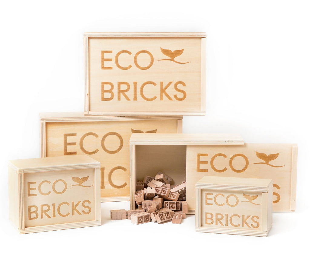 Eco-Bricks 250 pcs
