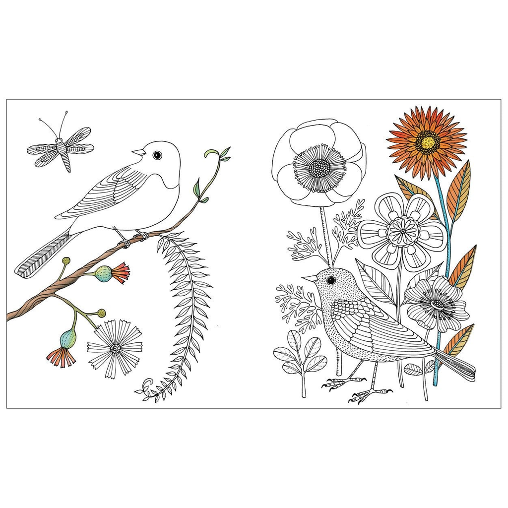 Galison Books - Avian Friends Guided Activity Journal