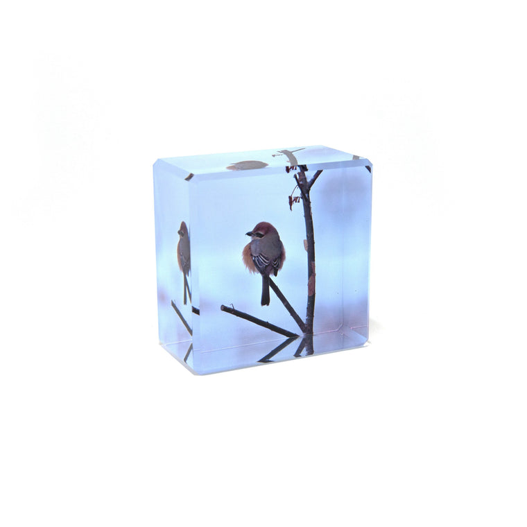 Paperweight (Square)