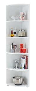Ecki 2 Corner Shelf