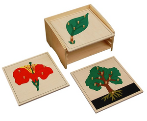 Botany Puzzle Cabinet with 3 Puzzles (Tree, Flower, Leaf)