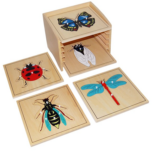 Insect Puzzle Cabinet with 5 Puzzles (Butterfly, Lady Bug, Wasp, Dragonfly, Fly)