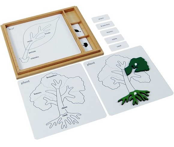 Botany Puzzle Activity Set