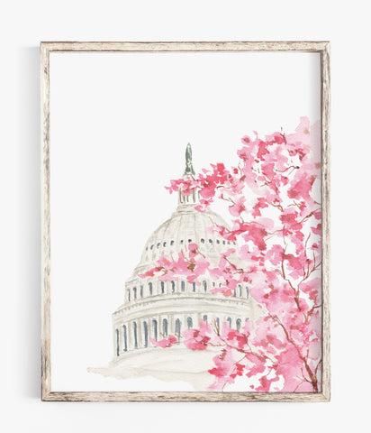 cherry blossoms washington dc watercolor print