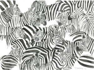 A Zeal of Zebras from the Masai Mara