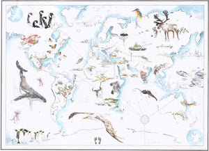 Anima Mundi World Map