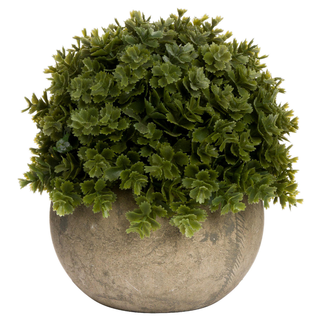 miniature hebe faux potted plant