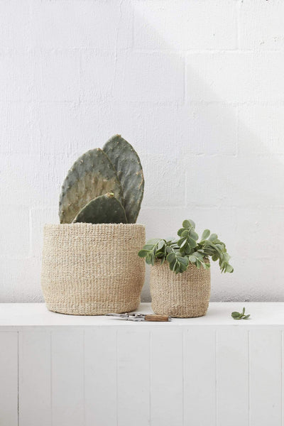 The Dharma Door Basket Woven Pot Duo Woven Pot Duo