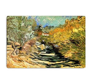 A Road at Saint-Remy with Female Figure by Van Gogh HD Metal Print