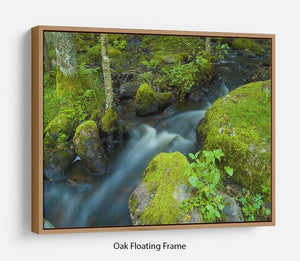 A small Floating Frame Canvas