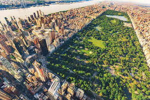 Aerial view looking north up Central Park Wall Mural Wallpaper - Canvas Art Rocks - 1