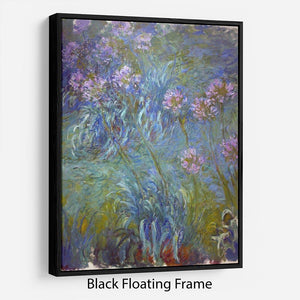 Agapanthus by Monet Floating Frame Canvas