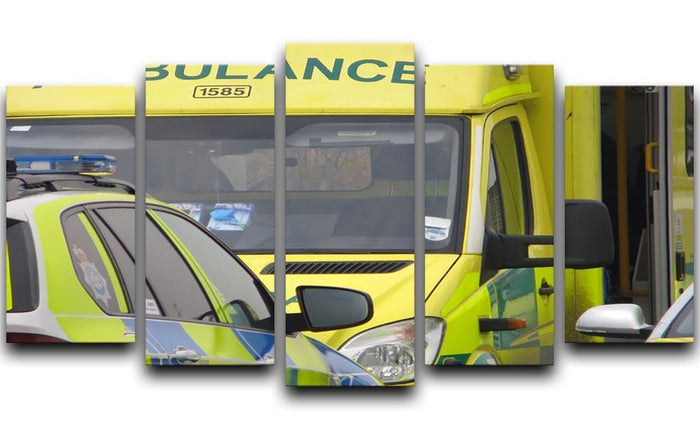 Ambulance and responder vehicles 5 Split Panel Canvas