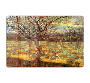 Apricot Trees in Blossom by Van Gogh HD Metal Print