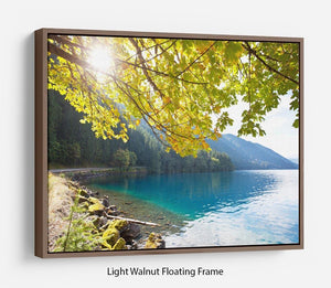 Autumn sun flare on lake Floating Frame Canvas
