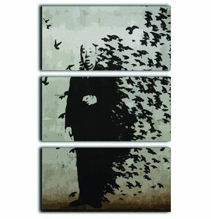 Banksy Hitchcock Birds 3 Split Panel Canvas Print - Canvas Art Rocks - 1