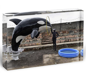 Banksy Seaworld Acrylic Block - Canvas Art Rocks - 1