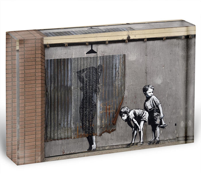 Banksy Woman In Shower Acrylic Block