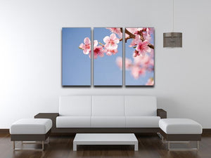 Beautiful colorful fresh spring flowers 3 Split Panel Canvas Print - Canvas Art Rocks - 3