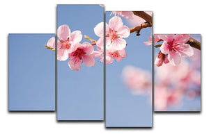 Beautiful colorful fresh spring flowers 4 Split Panel Canvas  - Canvas Art Rocks - 1