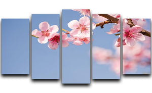 Beautiful colorful fresh spring flowers 5 Split Panel Canvas  - Canvas Art Rocks - 1