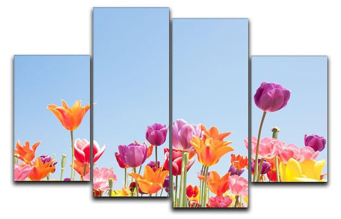 Beautiful coloured flowers 4 Split Panel Canvas