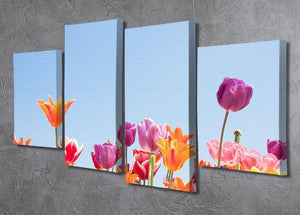 Beautiful coloured flowers 4 Split Panel Canvas  - Canvas Art Rocks - 2