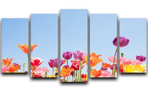 Beautiful coloured flowers 5 Split Panel Canvas  - Canvas Art Rocks - 1