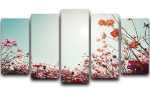 Beautiful cosmos flower field 5 Split Panel Canvas  - Canvas Art Rocks - 1