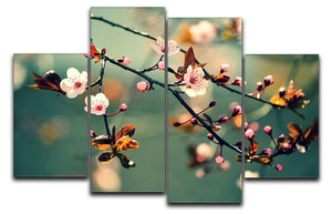 Beautiful flowering Japanese cherry 4 Split Panel Canvas  - Canvas Art Rocks - 1