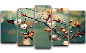 Beautiful flowering Japanese cherry 5 Split Panel Canvas  - Canvas Art Rocks - 1