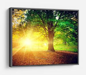 Beautiful park HD Metal Print