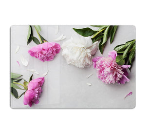 Beautiful pink and white peony flowers HD Metal Print