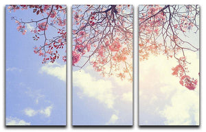 Beautiful tree pink flower in spring 3 Split Panel Canvas Print - Canvas Art Rocks - 1