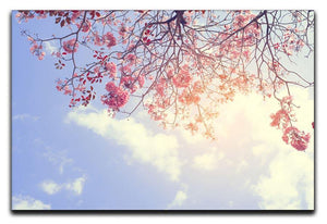 Beautiful tree pink flower in spring Canvas Print or Poster  - Canvas Art Rocks - 1
