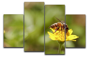Bee and small sunflower 4 Split Panel Canvas  - Canvas Art Rocks - 1
