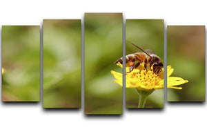 Bee and small sunflower 5 Split Panel Canvas  - Canvas Art Rocks - 1